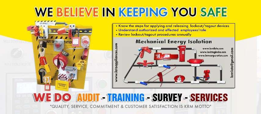 Audit Training Survey Services